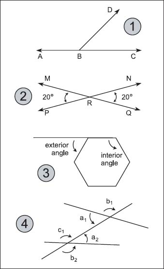 What are other types of angles the handy math answer book - Definition of alternate exterior angles ...