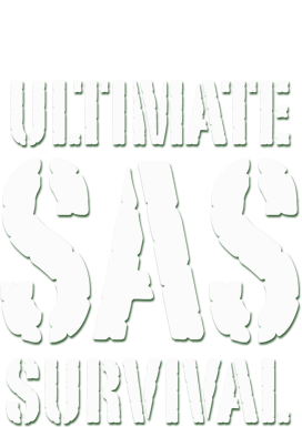 sassurvival_logo